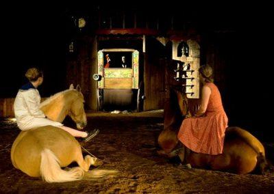 A_quoi_revent_les_chevaux_la_nuit5